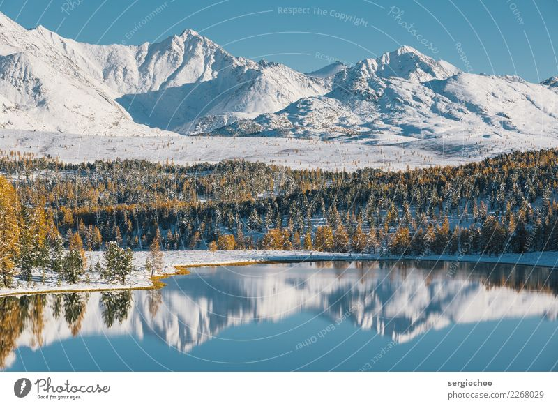 siberian alps Nature Landscape Water Autumn Winter Beautiful weather Ice Frost Snow Tree Alps Mountain Lakeside Authentic Wisdom Target Mirror Surface of water