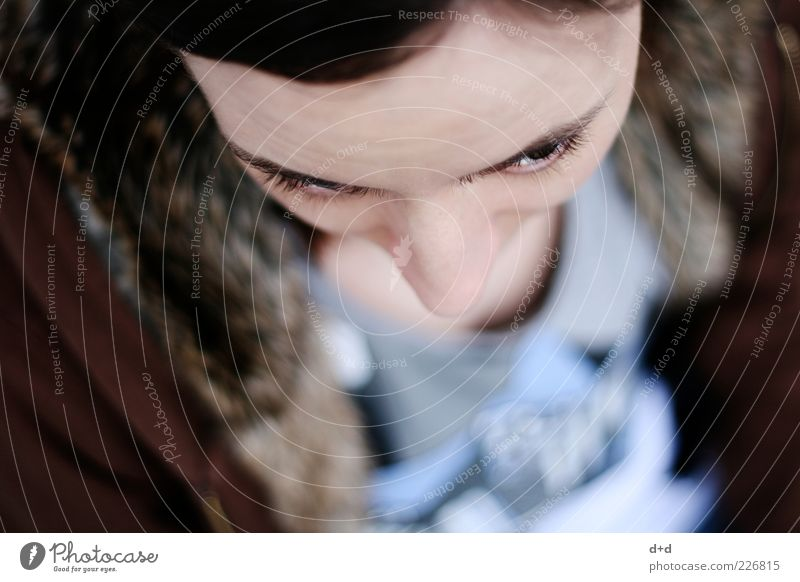"""v"" Human being Feminine Woman Young woman Eyes Eyelash Nose Bird's-eye view Pelt Eyebrow Pallid Skin Shallow depth of field Portrait photograph Brown Fur goods"