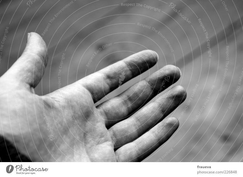 Human being Woman Hand Adults Skin Fingers Help Trust Indicate Handshake Gesture