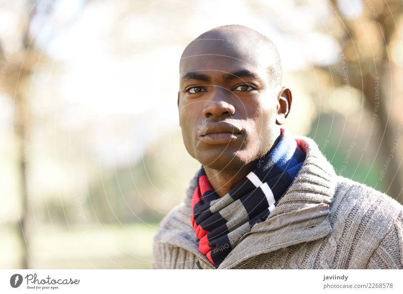 Young attractive black man wearing casual clothes in urban park Human being Youth (Young adults) Man Beautiful Young man 18 - 30 years Black Street Adults