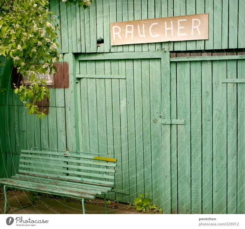 Green Tree Leaf Wall (building) Wood Blossom Wall (barrier) Signs and labeling Characters Bench Protection Hut Seating Wooden board Twigs and branches Plant