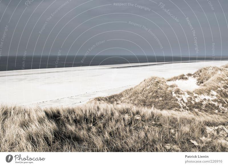 Sky Nature Beautiful Beach Ocean Clouds Far-off places Relaxation Dark Environment Landscape Gray Grass Sand Coast Air