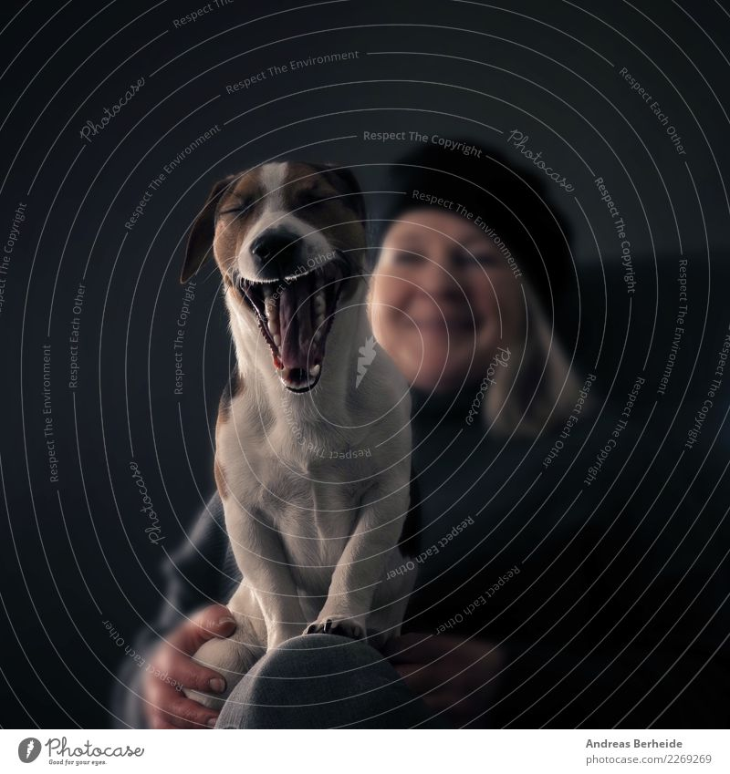 Woman Human being Dog Animal Adults Lifestyle Funny Feminine Laughter Smiling Pet Fatigue Boredom Grinning Muzzle Yawn