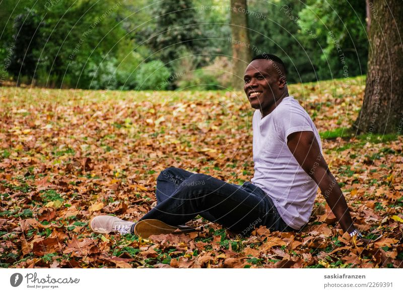 Park IV. Contentment Vacation & Travel Human being Masculine Young man Youth (Young adults) Man Adults Culture Nature Autumn Leaf Jeans Lie Dream Athletic