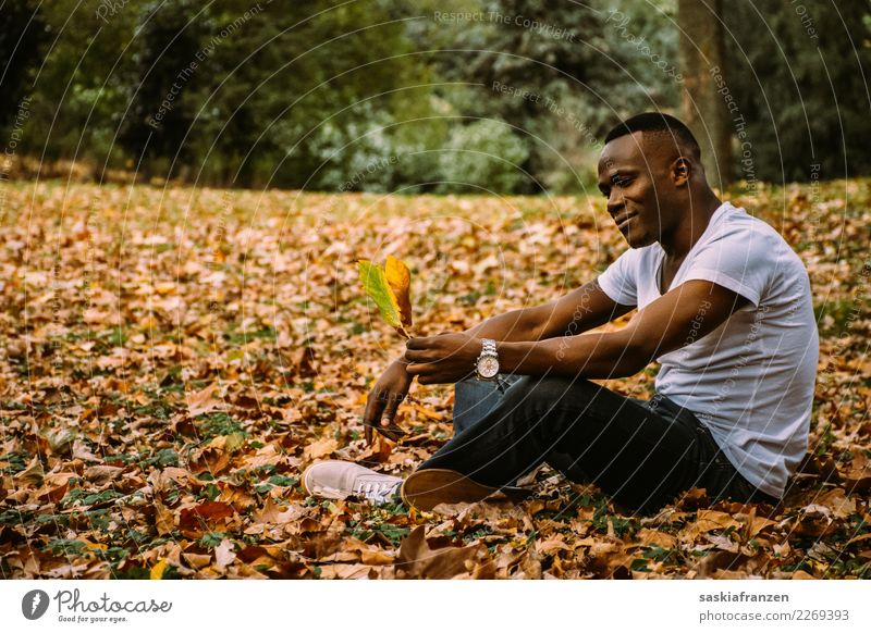 Park III. Contentment Vacation & Travel Human being Masculine Young man Youth (Young adults) Man Adults Culture Nature Autumn Leaf Jeans Lie Dream Athletic