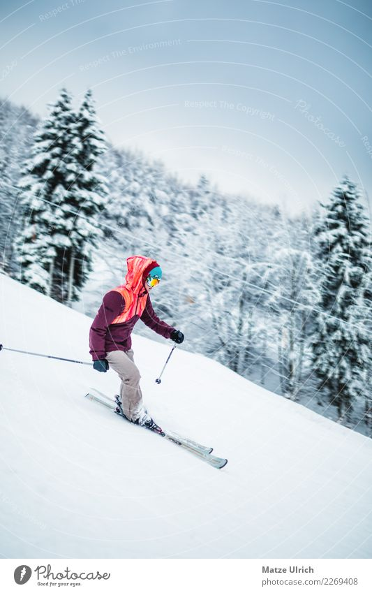 Woman Human being Nature Youth (Young adults) Young woman Landscape Forest Winter Mountain Adults Environment Feminine Snow Sports Movement Leisure and hobbies