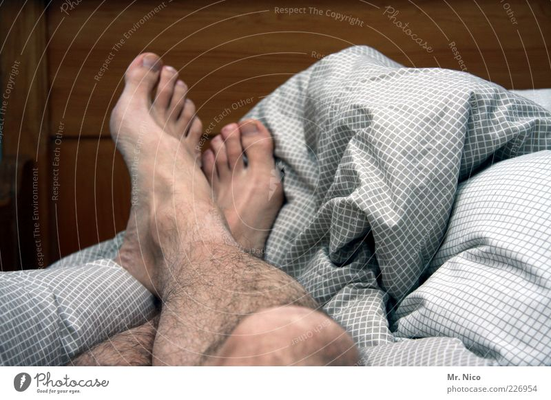 Calm Relaxation Dream Legs Feet Contentment Skin Lie Hair Sleep Masculine Bed Posture Fatigue To enjoy Bedclothes