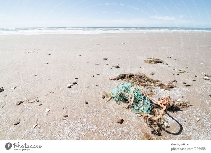 Water Summer Beach Ocean Far-off places Freedom Sand Stone Coast Dirty Rope Broken Net Trash North Sea