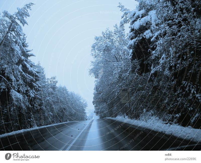 country road take me home... to westerwald Sauerland Westerwald Highway Country road Transport Traffic lane Forest Left Right Stripe Driving Cold Winter Frozen