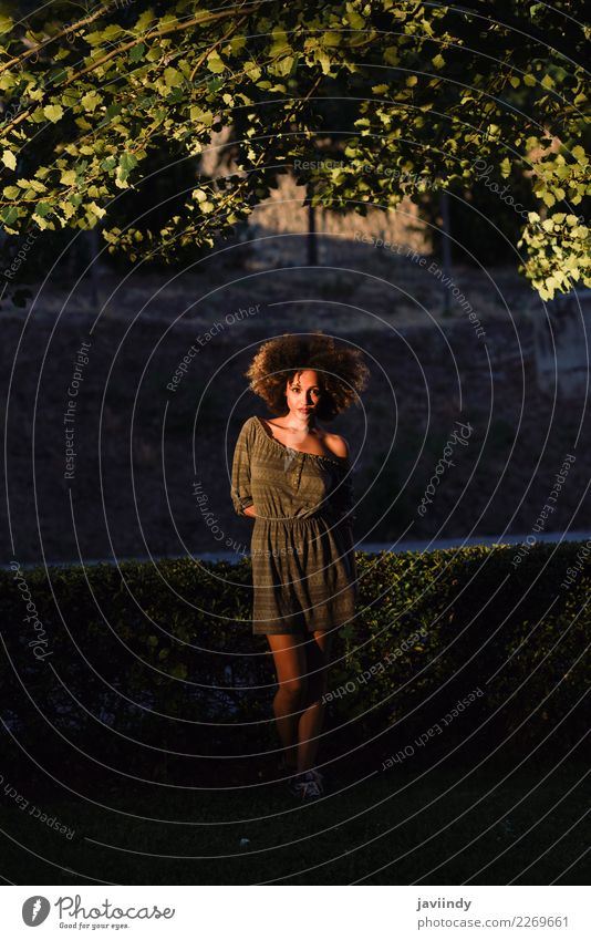 Young black woman with afro hairstyle at Sunset. Woman Human being Youth (Young adults) Young woman Beautiful 18 - 30 years Black Face Street Adults Lifestyle