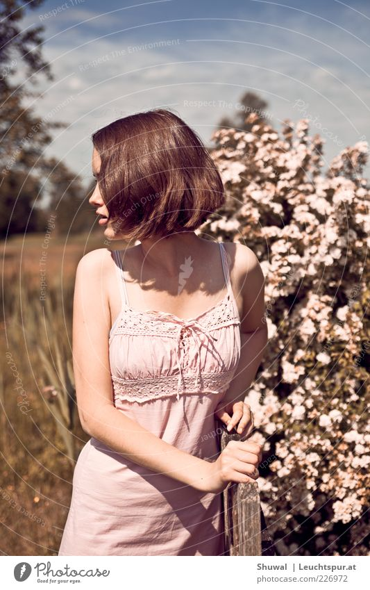 Human being Youth (Young adults) Beautiful Adults Feminine Emotions Blossom Pink Wild Esthetic Exceptional Bushes Romance Dress Observe