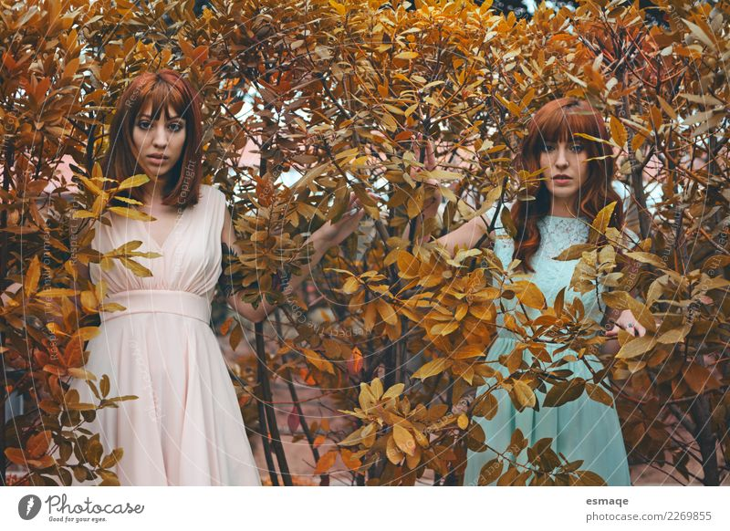 Portrait sister Human being Nature Youth (Young adults) Young woman Beautiful Lifestyle Love Feminine Style Think Retro Modern Elegant Authentic Adventure
