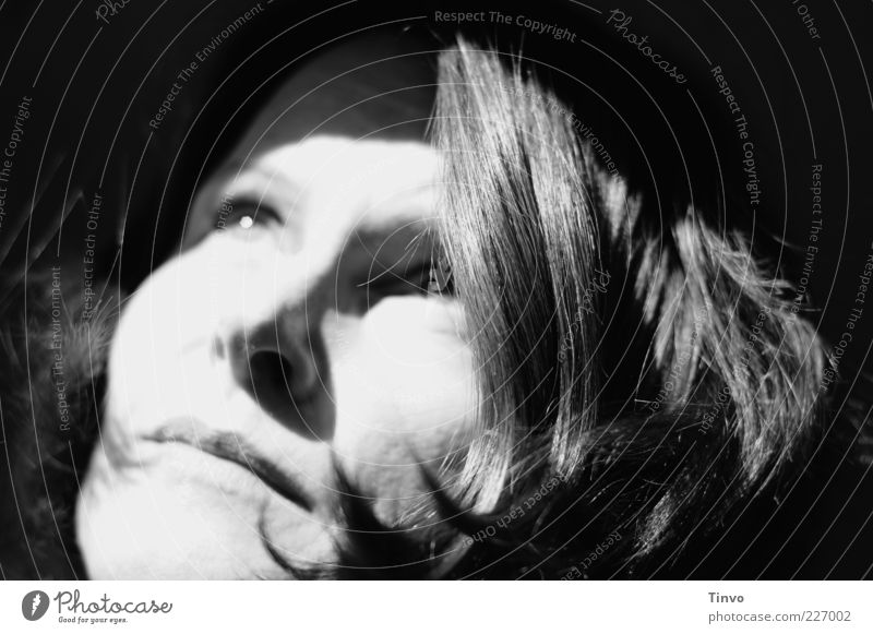 the sky is falling Woman Adults Face 30 - 45 years Looking Natural Feminine Hope Longing Loneliness Face of a woman Pallid Brunette Black & white photo Light