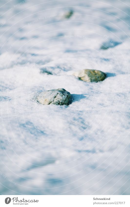 Nature White Winter Cold Snow Environment Stone Bright Ice Rock Frost