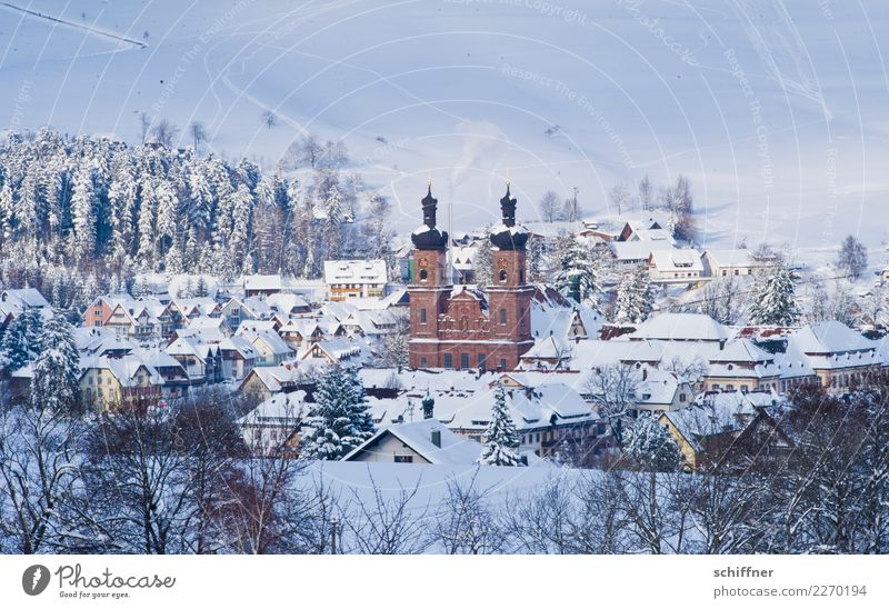 Winter kitsch, huh? Landscape Ice Frost Snow Tree Village House (Residential Structure) Cold Kitsch Cliche Snowfall Snowscape Church Fantastic Black Forest
