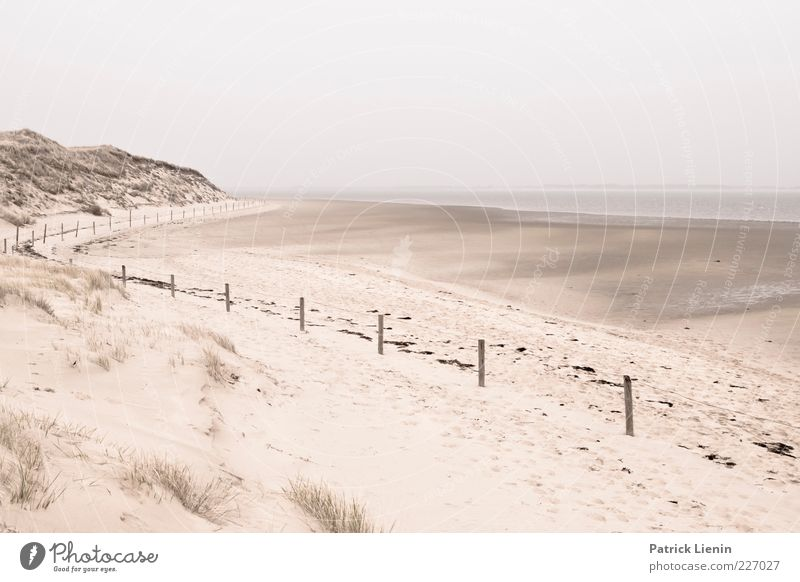 low tide Environment Nature Landscape Elements Sand Sky Weather Bad weather Coast North Sea Ocean Soft Amrum Fence Curved Dune Beach Low tide Relaxation Calm
