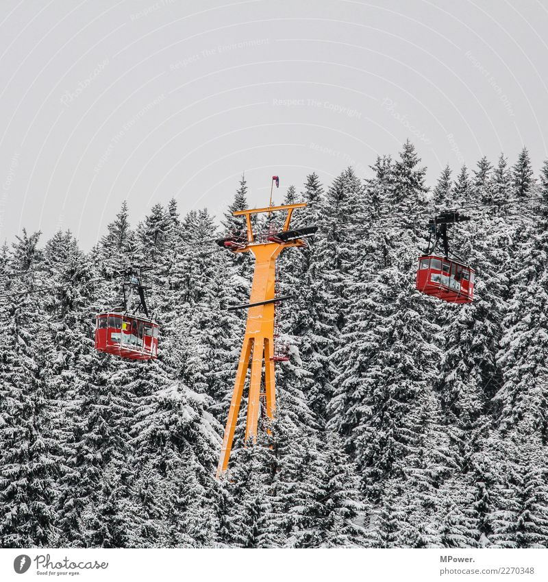 gondola lift Technology Environment Bad weather Snow Forest Mountain Cold Cable car Gondola Winter Winter vacation Winter sports Winter mood Red