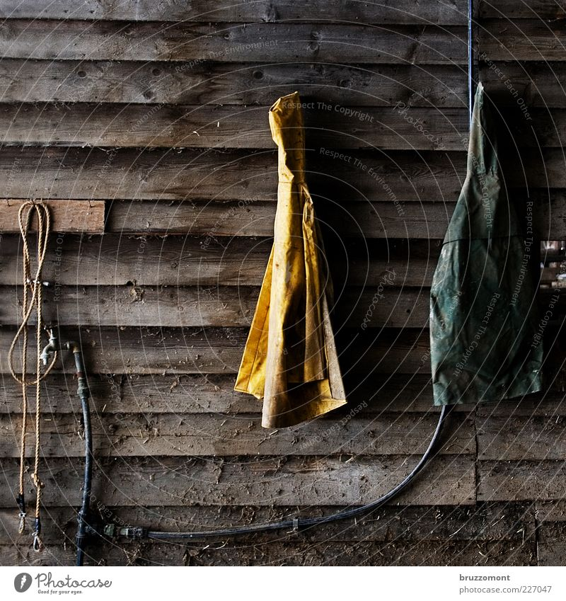 cardigans Work and employment Rope Workwear Protective clothing Wood Plastic Dirty Yellow Barn Rain wear Hose Tap Farm Farmer Colour photo Interior shot