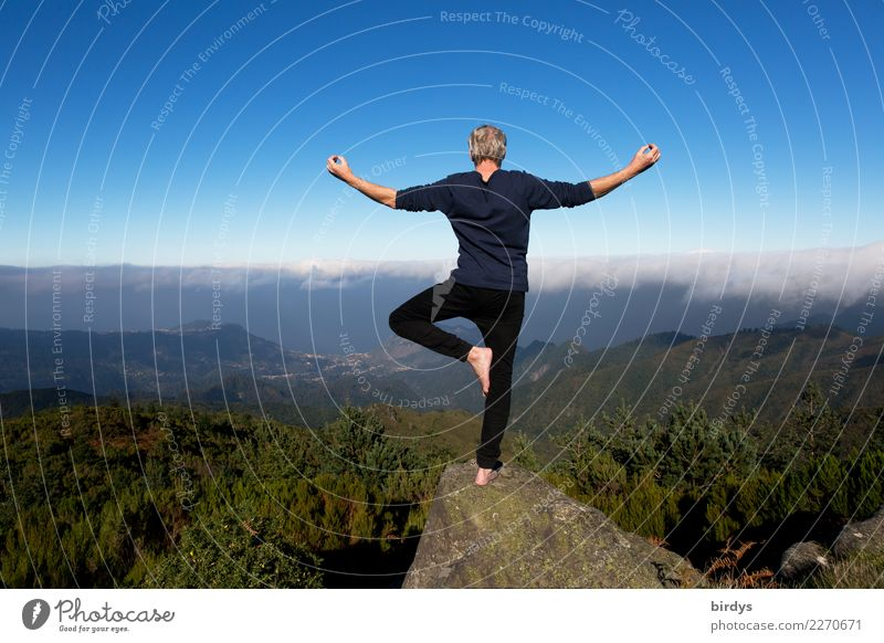 Yoga above the clouds Healthy Life Senses Meditation Vacation & Travel Summer vacation Mountain Man Adults 1 Human being 30 - 45 years 45 - 60 years Landscape