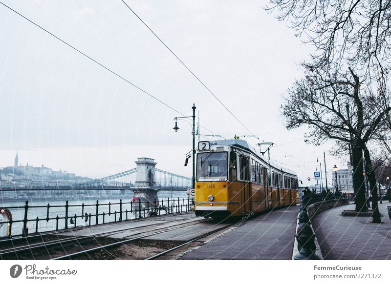 Tram in Budapest next to Danube (Danube) Transport Means of transport Traffic infrastructure Passenger traffic Public transit Rush hour Train travel Logistics