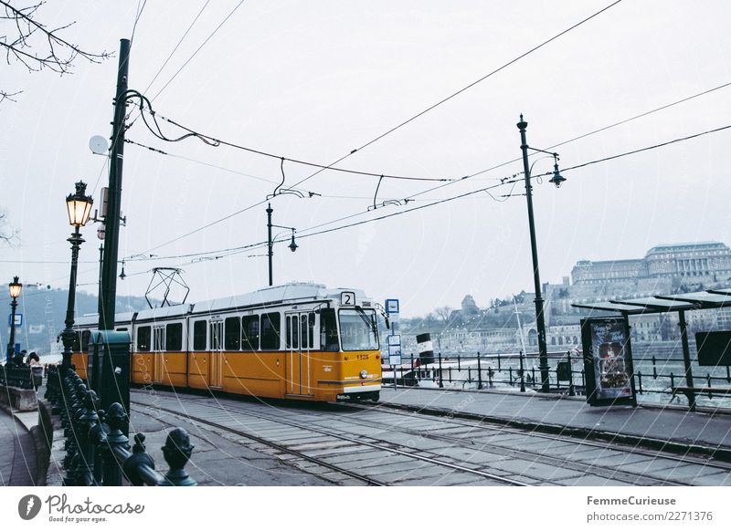 Tram in Budapest Town Capital city Logistics Public transit Lantern Overhead line Stop (public transport) Station Danube Yellow Hungary Winter Covered