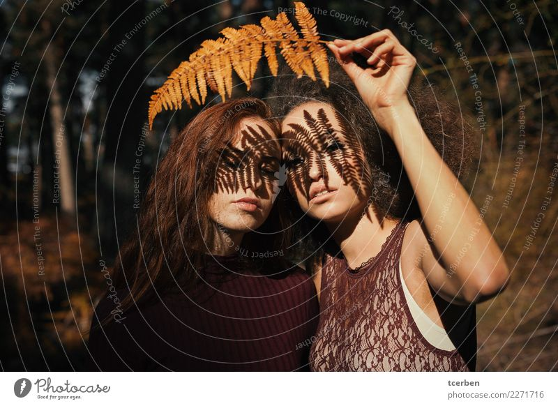 Two women with fern shadow on her face Human being Youth (Young adults) Young woman Colour Red Forest 18 - 30 years Adults Autumn Natural Emotions Feminine