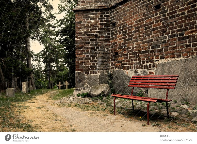 Tree Summer Emotions Lanes & trails Stone Religion and faith Wait Church Hope Bench Transience Crucifix Fatigue Belief Cemetery Grave