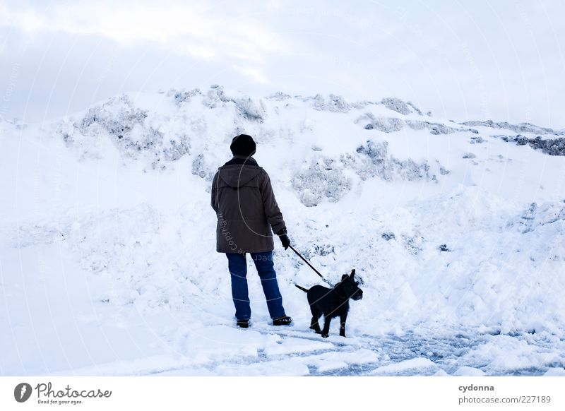 Human being Nature Winter Calm Loneliness Life Cold Snow Environment Landscape Freedom Mountain Dog Movement Lanes & trails Dream