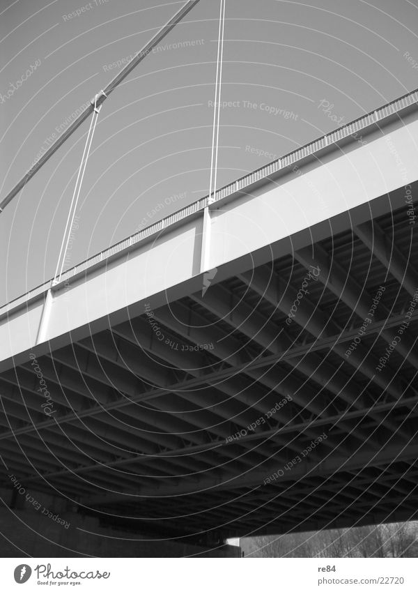 Next to the Bridge Cologne Severins bridge Under Steel Raw Iron Concrete Gray Black White Carrier Wire Rhine Perspective Shadow Stone Cologne-Deutz Sky Rope