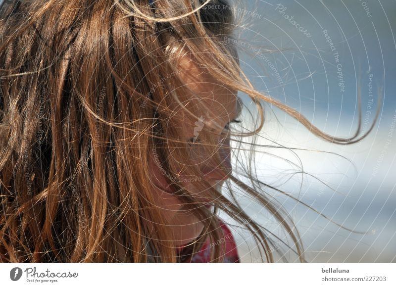 Girl Summer Hair and hairstyles Coast Wind Beautiful weather Joie de vivre (Vitality) Long-haired Strand of hair