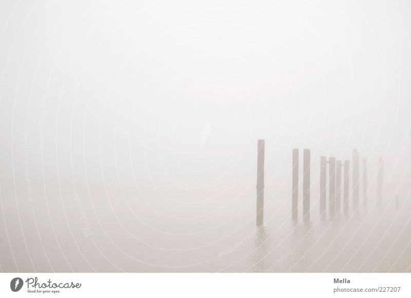 Quite a lot Environment Nature Fog Coast Stand Gray Calm Climate Prop Pole Bollard Gloomy Dreary Colour photo Subdued colour Exterior shot Deserted