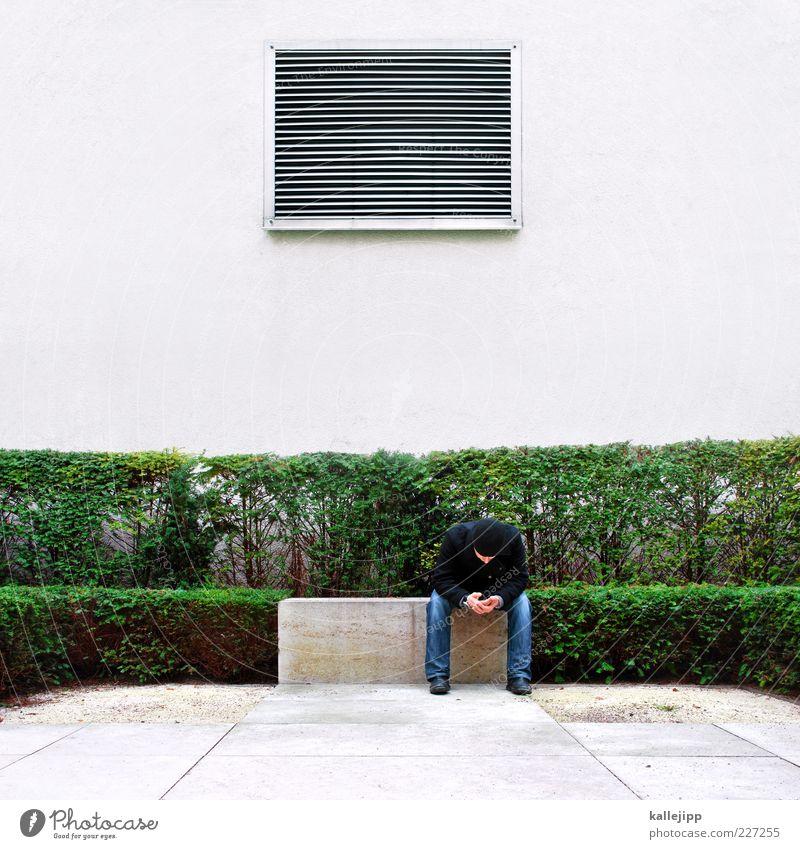 arte - close of transmission Lifestyle Masculine Man Adults 1 Human being Plant Bushes Garden Park Jeans Jacket Cap Sit Ventilation Stripe Box tree Hedge Wait