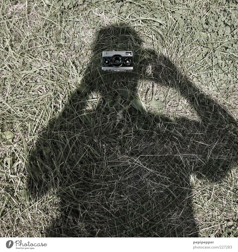 view into the camera Camera Masculine 1 Human being Grass Meadow Gray Green Take a photo Exterior shot Close-up Day Shadow Contrast Upper body