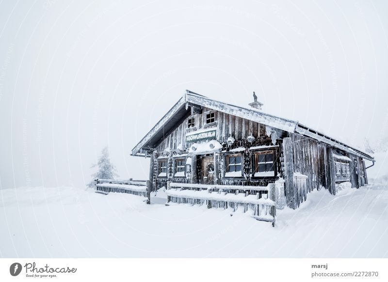 ripple Winter Weather Gale Ice Frost Snow Snowfall Wood Cold Chalet vacation Hut Alpine hut Homey Anticipation Protection Winter vacation Colour photo