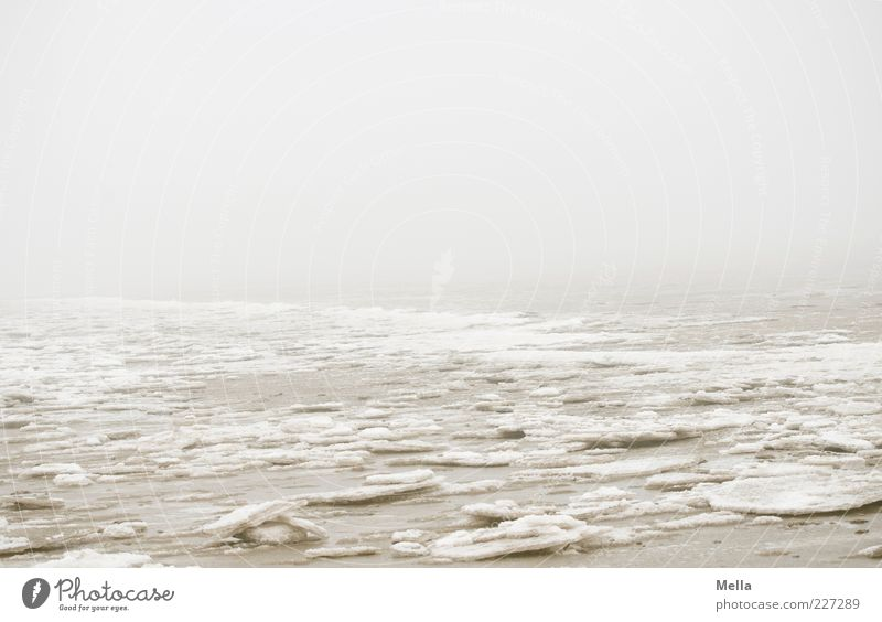 Nature Ocean Winter Calm Loneliness Cold Environment Landscape Gray Coast Moody Weather Ice Fog Climate Gloomy