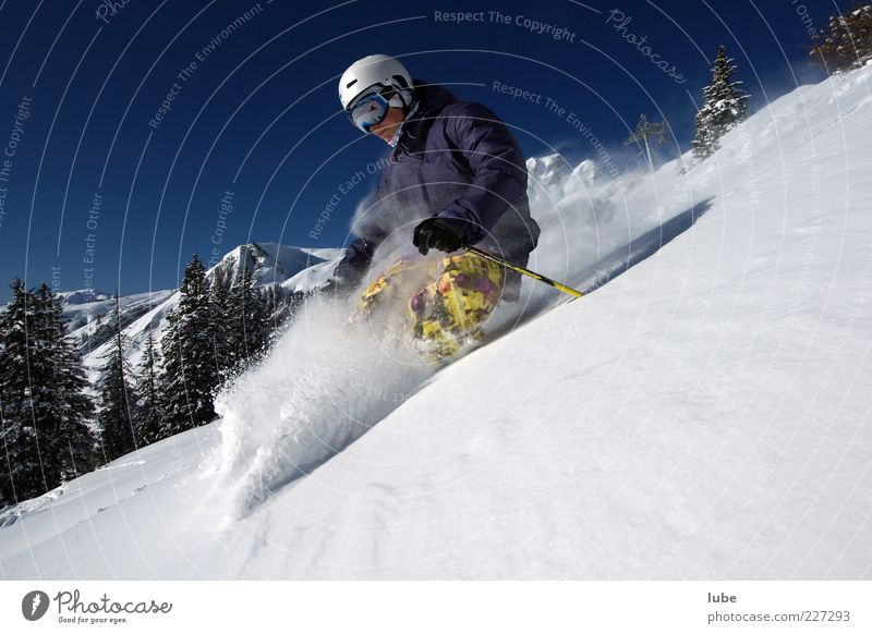 deep snow intoxication Vacation & Travel Tourism Freedom Winter Snow Winter vacation Mountain Winter sports Skis 1 Human being Nature Landscape Cloudless sky