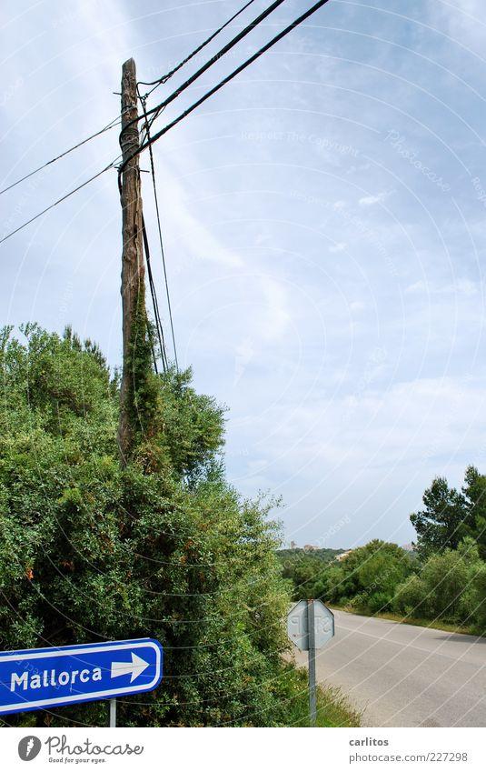 Sky Blue Green Summer Vacation & Travel Street Landscape Tourism Bushes Cable Signage Beautiful weather Electricity pylon Wanderlust Majorca Road marking