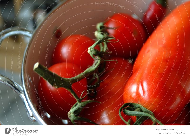 Red Healthy Italy Tomato