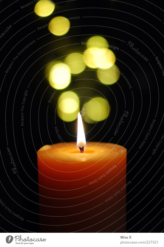 Yellow Dark Bright Orange Candle Decoration Illuminate Point Flame Candlelight Point of light Candlewick Candle flame