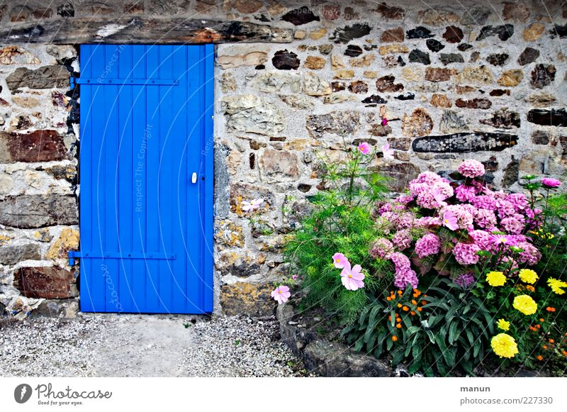 Blue Beautiful Vacation & Travel Flower House (Residential Structure) Wall (building) Wood Garden Architecture Wall (barrier) Stone Door Facade Tourism Natural Simple