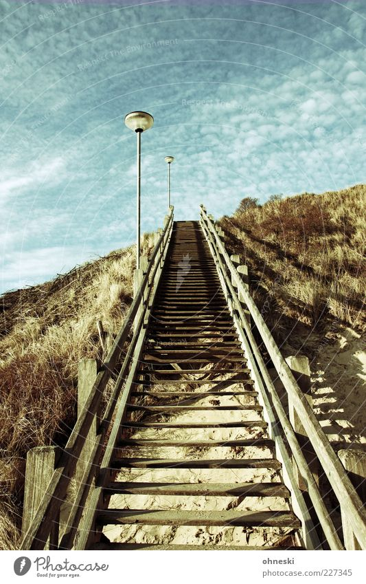 Sky Wood Lanes & trails Stairs Hope Target Beach dune Dune Lantern Handrail Beautiful weather Banister Optimism