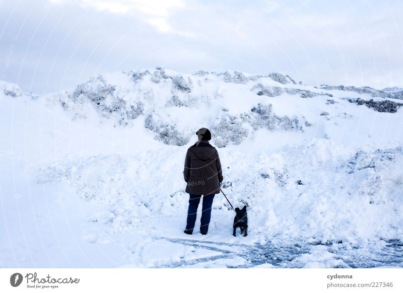 ice age Trip Far-off places Freedom Winter vacation Environment Nature Landscape Sky Climate Ice Frost Snow Mountain Loneliness Uniqueness End Mysterious Idea
