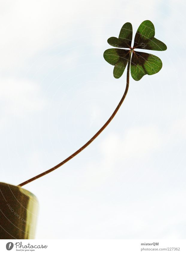 From the pursuit of happiness... Happy Good luck charm Four-leafed clover Clover Cloverleaf Flowerpot Growth Target Aspire Green Stalk Long