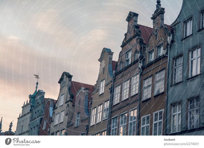 Cute Dutch style houses Old Blue Town House (Residential Structure) Window Architecture Building Gray Facade Together Living or residing Elegant Esthetic