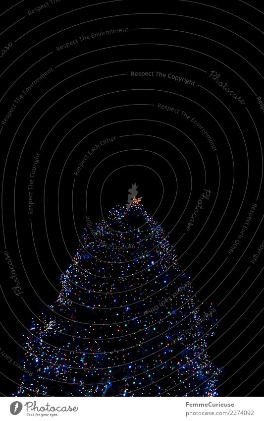 Christmas tree with colorful lights at night Sign Religion and faith Tradition Top of the Christmas tree Light Fairy lights Sea of light Point of light