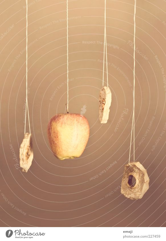 Nutrition Fruit Sweet Circle Apple Dry String Hang Still Life Organic produce Process Food Sense of taste Dried fruits