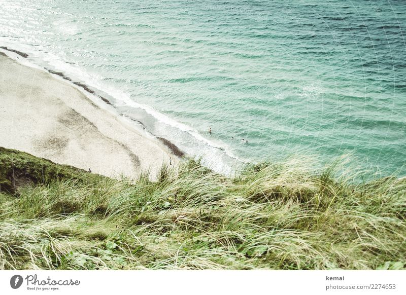 Human being Vacation & Travel Nature Summer Beautiful Green Water Landscape Ocean Relaxation Beach Life Tourism Playing Freedom Group