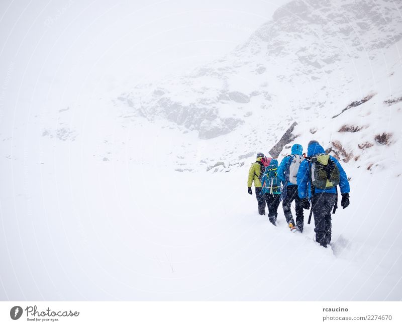 Mountaineers team during a winter expedition. Human being Vacation & Travel Blue Landscape White Winter Snow Sports Tourism Group Hiking Fog Weather Power