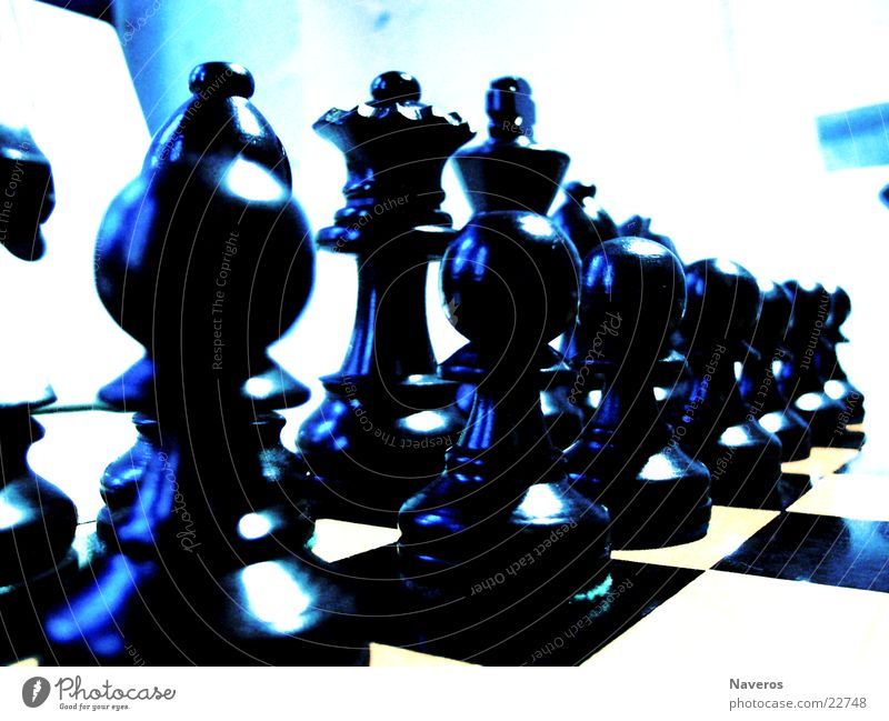 chessmen Chess piece White Black Playing Planning Board game Leisure and hobbies Think Intellect Row Lady King Start position Macro (Extreme close-up)
