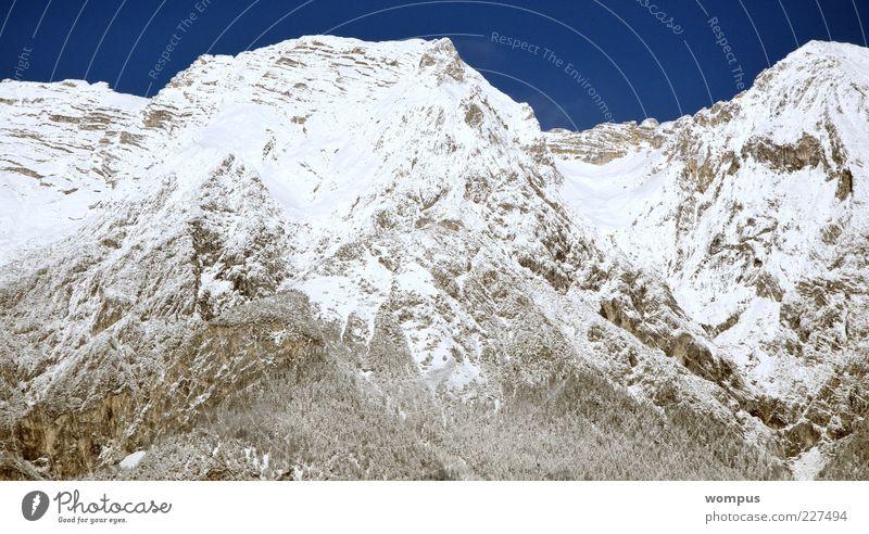 Steil,Kalt.Extrem cool,einfach lässig Nature Landscape Sky Cloudless sky Snow Hill Rock Alps Mountain Peak Snowcapped peak Blue Gray White Colour photo